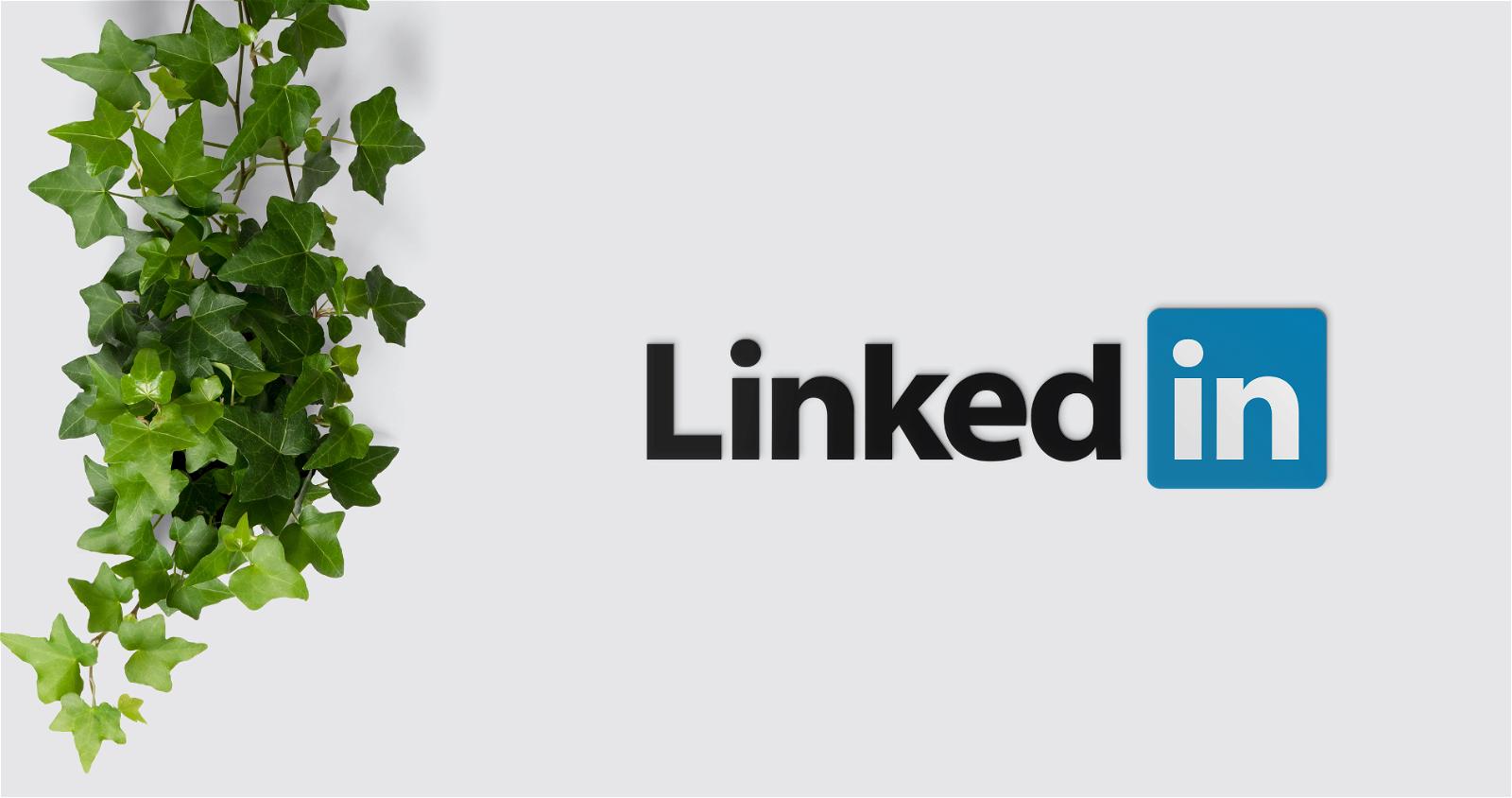 LinkedIn vs CV